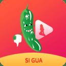 丝瓜视频手机app